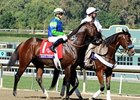 Rail Trip