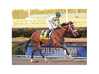 "Mucho Macho Man cruises to victory in the Florida Sunshine Millions Classic.<br><a target=""blank"" href=""http://photos.bloodhorse.com/AtTheRaces-1/At-the-Races-2014/35724761_2vdnSX#!i=3029257280&k=KtSDV3X"">Order This Photo</a>"