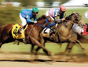 U.S. Wagering, Race Days Down in September