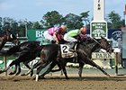 "Golden Ticket gets up late to win the Left Bank.<br><a target=""blank"" href=""http://photos.bloodhorse.com/AtTheRaces-1/At-the-Races-2014/i-hBdrtv6"">Order This Photo</a>"