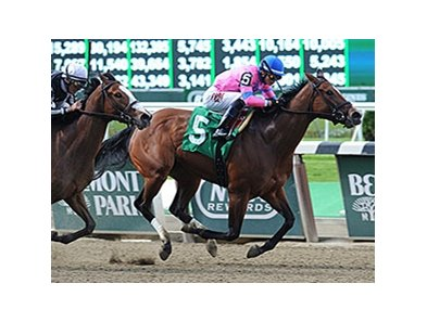 "La Verdad won her third race in a row in the Critical Eye.<br><a target=""blank"" href=""http://photos.bloodhorse.com/AtTheRaces-1/At-the-Races-2014/i-FXL2sk7"">Order This Photo</a>"