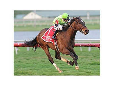 Lochte won the 2014 Gulfstream Park Turf Handicap. 