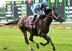 "Sayaad comes home strong to win the Forbidden Apple Stakes.<br><a target=""blank"" href=""http://photos.bloodhorse.com/AtTheRaces-1/At-the-Races-2014/i-hts4nwg"">Order This Photo</a>"