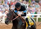 Breeders' Cup Classic Will Answer Questions
