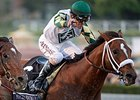 Mucho Macho Man to Carry 124 at Santa Anita