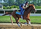 Belmont Stakes News Minute: 6/5/2013