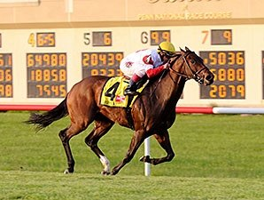 Back on Turf, Bobby's Kitten Takes Penn Mile