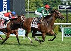 "Cat's Claw won the 2014 Fasig-Tipton Waya Stakes. <br><a target=""blank"" href=""http://photos.bloodhorse.com/AtTheRaces-1/At-the-Races-2014/i-nN6dMrQ"">Order This Photo</a>"