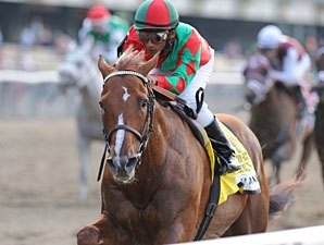 Birdrun Wire-to-Wire in Brooklyn Handicap