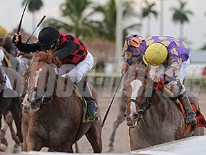 Sing Praises (right) outfinishes Royal Squeeze to win the In Reality Division of the Florida Sire Stakes Series.