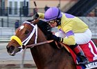 Uncle Sigh's Breeze Thrills Trainer Contessa