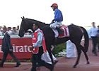 Dubai Carnival: Al Bastakiya - Secret Number