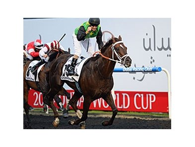 "Variety Club runs away with the Godolphin Mile.<br><a target=""blank"" href=""http://photos.bloodhorse.com/AtTheRaces-1/Dubai-2014/38085033_tQgx4h#!i=3148527267&k=hScrgKm"">Order This Photo</a>"