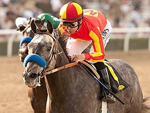 Sham Stakes winner Midnight Hawk takes on 6 in the Robert B. Lewis Stakes.