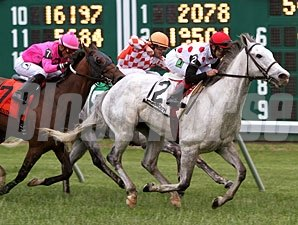 Za Approval faces 6 in the Poker Stakes on the May 26 Memorial Day card at Belmont Park.