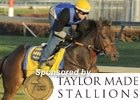 Breeders' Cup News Minute: 11/02/11 (Video)