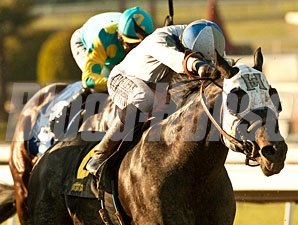 Sahara Sky won the 2013 San Carlos Stakes.