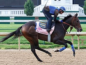Filly Ria Antonia Confirmed for Preakness
