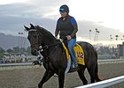 Ron the Greek Out of Breeders' Cup Classic