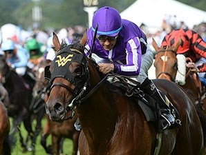 Hootenanny won the 2014 Windsor Castle Stakes.