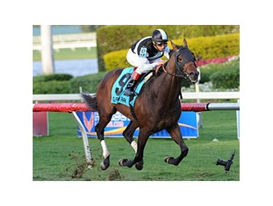 "Amira's Prince <br><a target=""blank"" href=""http://photos.bloodhorse.com/AtTheRaces-1/at-the-races-2013/27257665_QgCqdh#!i=2367957690&k=Vht4Z3D"">Order This Photo</a>"