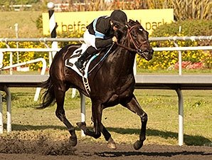 Shared Belief Highlights First Los Al Derby