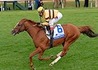 "Wise Dan won the 2014 Shadwell Turf Mile. <br><a target=""blank"" href=""http://photos.bloodhorse.com/AtTheRaces-1/At-the-Races-2014/i-BhRfzmr"">Order This Photo</a>"