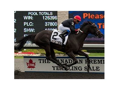 Youcan'tcatchme won the 2013 Seaway Stakes.