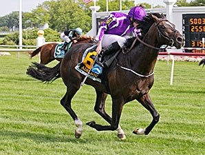 Adelaide won the 2014 Secretariat Stakes.