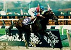 "Cigar won the 1995 Breeders' Cup Classic. <br><a target=""blank"" href=""http://photos.bloodhorse.com/Classics/Classic-Photos/i-HTbBs4Z"">Order This Photo</a>"