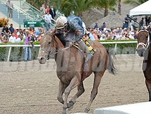 Gamay Noir won the Rampart Stakes on March 29.