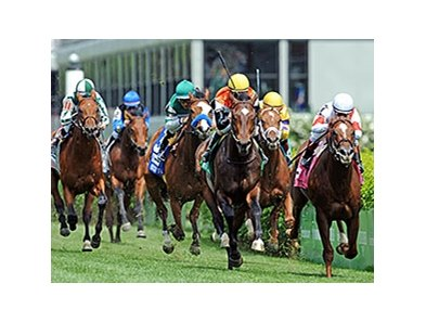 "Global View comes running late to take the American Turf Stakes.<br><a target=""blank"" href=""http://photos.bloodhorse.com/AtTheRaces-1/At-the-Races-2014/i-bwRQKHf"">Order This Photo</a>"