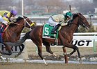 "Samraat won the 2014 Withers Stakes. <br><a target=""blank"" href=""http://photos.bloodhorse.com/AtTheRaces-1/At-the-Races-2014/35724761_2vdnSX#!i=3053659410&k=SZWjdZg"">Order This Photo</a>"