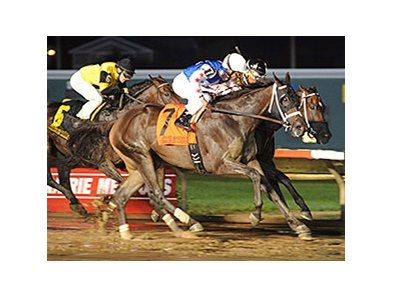 Carve fights for the win in the Cornhusker Handicap.