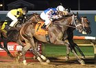 Carve Seeks Cornhusker Handicap Repeat
