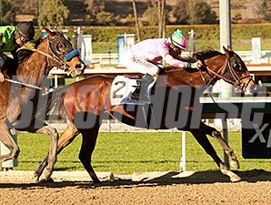 Fashion Plate won the Las Virgenes Stakes on Feb 1.