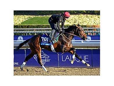 Mexikoma at the Breeders' Cup.