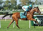 "Lady Eli won the Miss Grillo Stakes by 3 lengths on Sept 28.<br><a target=""blank"" href=""http://photos.bloodhorse.com/AtTheRaces-1/At-the-Races-2014/i-GFgvFWq"">Order This Photo</a>"