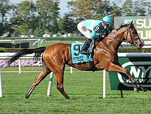 Lady Eli won the Miss Grillo Stakes by 3 lengths on Sept 28.