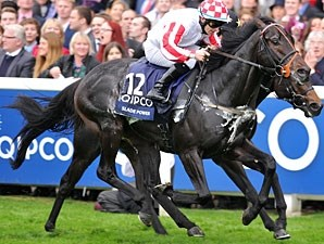 Slade Power won the 2013 QIPCO British Champions Sprint by a neck.