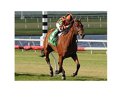 "Little Mike delivers victory in the Flying Pidgeon.<br><a target=""blank"" href=""http://photos.bloodhorse.com/AtTheRaces-1/At-the-Races-2014/i-kGfj8kn"">Order This Photo</a>"