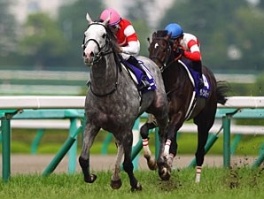 Gold Ship won last year's Takarazuka Kinen by 3 1/2 lengths.