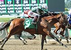 New York-Breds Zivo, Captain Serious Score