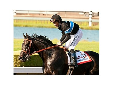 Shared Belief has been installed the 5-2 morning-line favorite in the Pacific Classic.