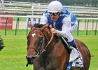 Head May Continue Mile Success with Anodin