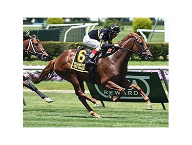 "Undrafted won the 2014 Jaipur Invitational Stakes. <br><a target=""blank"" href=""http://photos.bloodhorse.com/AtTheRaces-1/At-the-Races-2014/i-2s7hfZw"">Order This Photo</a>"