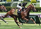 Welker's Undrafted Aimed for Newmarket Race