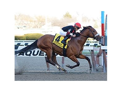 "Dads Caps won the 2014 Carter Handicap. <br><a target=""blank"" href=""http://photos.bloodhorse.com/AtTheRaces-1/At-the-Races-2014/35724761_2vdnSX#!i=3162309401&k=3xVLxd2"">Order This Photo</a>"