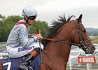 Toronado after winning the 2013 Sussex Stakes.