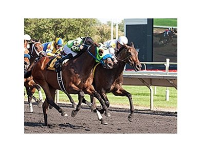 Avanzare (right) holds off the closing Hattaash to win the Washington Park Handicap.